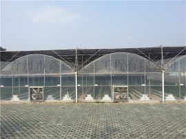 温室建设 阳光板温室厂家 阳光板大棚 蔬菜大棚建设