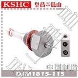 浮筒电极DJM1815-115氧化铝陶瓷水位电极 锅炉测量筒液位计