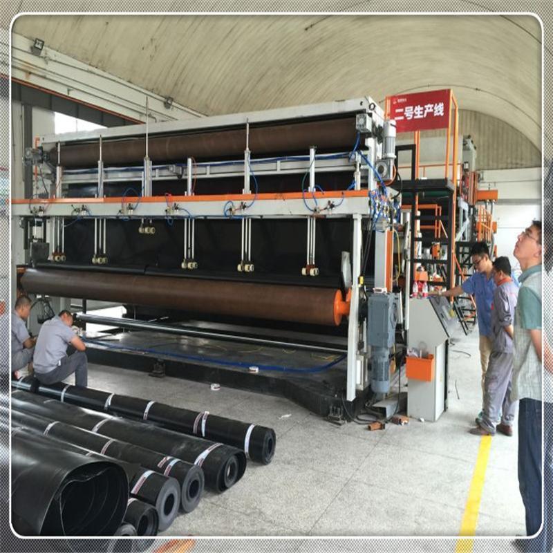 高鐵專用防水卷材設備 土工膜防水板擠出設備