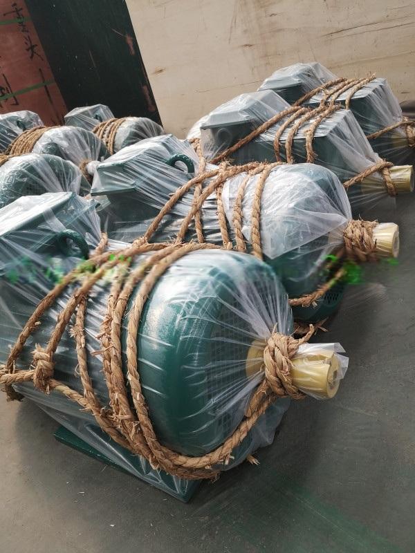 批發供應起重配件  起重機械驅動專用三相非同步電機