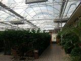温室生态餐厅设计安装 生态园餐厅造价