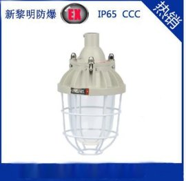 BAD51/BCD-250/CCd(IIC)隔爆型防爆灯