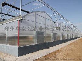 信阳蔬菜温室温室大棚造价