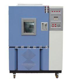 低温恒温检测试验箱(DHS-100)
