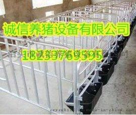 畜牧业机械母猪定位栏母猪限位栏规格型号可定做尺寸源头养猪设备厂家