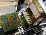 上海DR新研发油炸海苔片油炸机 海苔片油炸去油设备