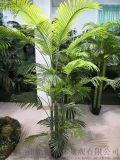 廣州模擬葵樹廠家--銘創園林