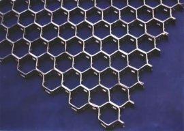 不锈钢龟甲网 (2型)