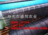 供應農用黑色遮陽網   育苗專用 隔熱網