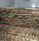 熱風大迴圈木材烘乾設備,週期短木材烘乾機
