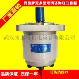 合肥长源液压齿轮泵铸铁二进二出CBHLB-F563/F508-AFφ1L
