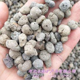本格供应建筑回填陶粒 水处理生物陶粒滤料 轻质陶粒
