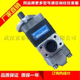合肥长源液压齿轮泵CBHT-F2518-CFZ(右法兰)