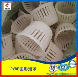 喜訊萍鄉科隆新研發DN110塑料PVDF泡罩新模具