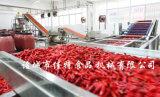 气泡式辣椒清洗机质量可靠 节能型果蔬清洗机