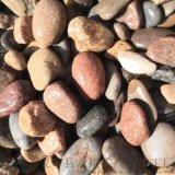 密雲區鋪路鵝卵石   永順墊層用鵝卵石廠家