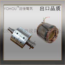 羽後電気10S/M兩極無刷永磁同步電機轉子