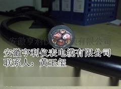 亨仪控制变频电缆BPFFPP2导体**