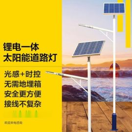 江苏弘光照明工程公司生产LED小金豆锂电池太阳能路灯户外定制