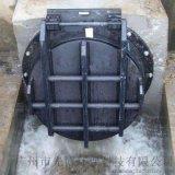 东莞海岸、河提专用玻璃钢拍门、HDPE拍门