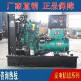 太發供應   玉柴系列30KW柴油發電機組