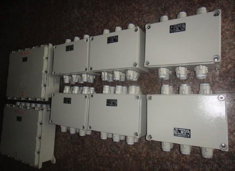 BJX-135*135防爆接线箱12节端子