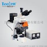 武汉荧光显微镜TL3001正置落射荧光显微镜