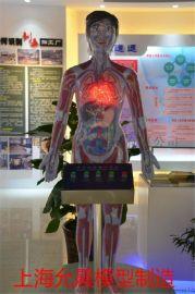 人体禁毒模型  人体模型演示  上海允晨医疗器械是国内一家专业从事禁毒教育模型设备,禁毒软件开发的专业性公司,公司成立数十年来发开的模拟禁毒软件.变脸吸毒后软件