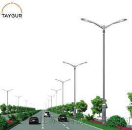 泰格LED照明,双臂路灯杆,热镀锌路灯,道路照明