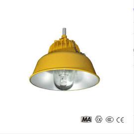 BPC8700防爆平台灯/BLC8600防爆道路灯