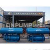 天津_大流量浮筒軸流泵_養殖用軸流泵