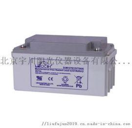 理士蓄电池DJM1275 S理士12V75AH