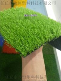 塑料仿真草皮 人造草坪足球草 五人制包工包料施工