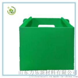 阳澄湖大闸蟹专用塑料中空板手提箱 防水防潮