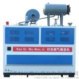 燃气模温机 导热油锅炉 20万大卡 7.5KW油泵