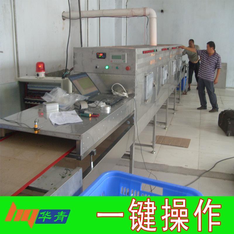 大型隧道式微波干燥设备定制 磷酸铁锂烘干 电池材料微波干燥设备