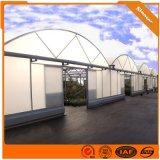 大棚管 大棚鋼管 溫室大棚工程 溫室工程