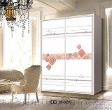 3D精美工藝玻璃衣櫃門SC-11011