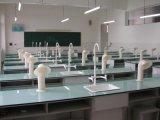 供应澄迈化学实验桌   物理实验桌  生物实验桌