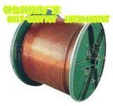 铜包钢绞线的广泛应用 铜覆钢绞线在防雷接地的重要性