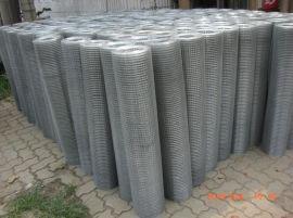 镀锌电焊网-