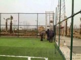 球场护栏网、体育场护栏网