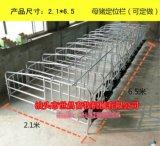 養豬設備廠家出售母豬定位欄價格