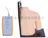 电子肩关节腔内注射模型