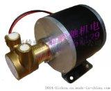 低噪音直流無刷高壓旋轉葉片泵咖啡機泵實驗室泵反滲透泵黃銅