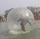 水上步行球(ljf8099)