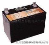 大力神蓄电池12V9AH厂家直销