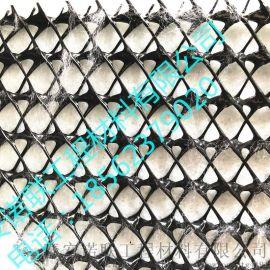 复合排水网_复合排水网施工