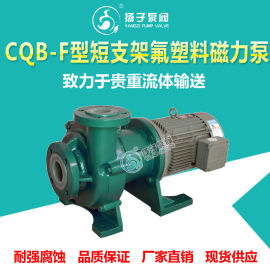 CQB型氟塑料磁力泵衬氟磁力泵耐腐蚀磁力泵