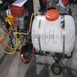 推车杀毒喷雾机  手动高压农用喷雾器  智能电动高压喷雾器